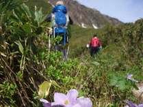 登山プラン-登山イメージ