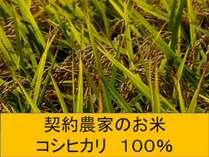 【朝食バイキング】契約農家のお米 『コシヒカリ100%』使用!!『朝食バイキング』