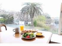 海、パームの木、看板??を眺めながらの朝食
