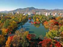 中島公園10月中旬~10月下旬。紅葉の見ごろ時期。