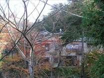 外観です!別所温泉の自然の木々に囲まれて、空気も心もリフレッシュできますよ!