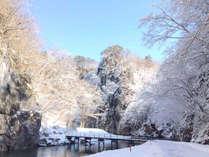 【舟下り】冬/12~2月限定で『こたつ舟』を運行します。