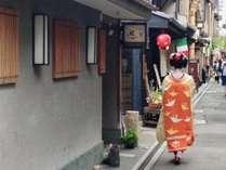 芸舞妓さんが行き交う花街 先斗町。運がよろしければ、その姿をご覧いただけます。