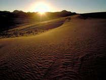 ◇鳥取砂丘≪日々異なる自然の様相を見せる鳥取の観光地≫