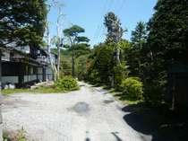 白石荘庭の風景