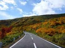 紅葉の見ごろは9月下旬から10月中旬★八幡平アスピーテラインまで車で40分【2食付スタンダード】