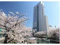 外観画像(桜)北側堀川沿い