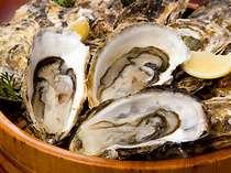 いよいよ旬です!冬の厳選食材!名産『浦村牡蠣』シーズンインです!