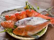 舟盛プラン地魚の一例※旬の地魚、たっぷり盛ります!写真はワラサ・キンメ・オニカサゴ・カツオ・ホウボウ
