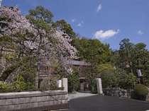 【門より(春)】