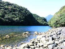【安房川】歩いてすぐ!!ゆったりと流れる大自然の川。