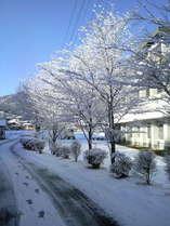 冬は雪見露天も風流です♪お越しの際は十分にお気を付けください。
