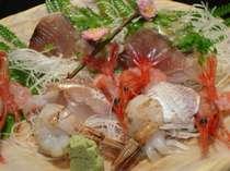 春の魚介類をふんだんに使用した新鮮なお造り