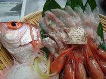 ≪ノドグロ≫お刺身◆白身のトロと呼ばれる高級魚です。