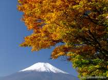 フォレストリゾート 山中湖秀山荘
