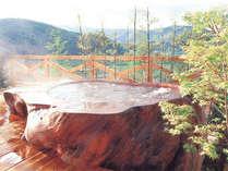 【モンスターバス】45000年前の巨木でつくった浴槽です!
