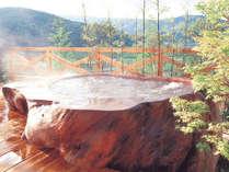 *【モンスターバス】45000年前の巨木でつくった浴槽です!