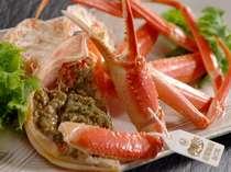 茹で蟹 新湊産『本ずわい蟹』 足に付けられたタグが水揚げ漁港の証です