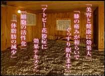 旅館あしか荘