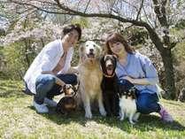 【戌年記念プラン販売】わんパラは小型犬~超大型犬までどんなワンコも大歓迎!家族揃ってお越し下さい♪