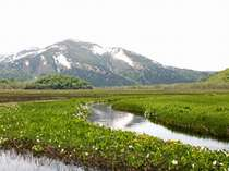 【尾瀬】水芭蕉で有名な「尾瀬」の大自然を満喫!爽やかトレッキングへ出かけよう!