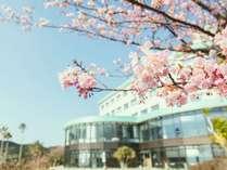 海を一望する高台のホテル、ガーデンでは四季折々に咲く花をお楽しみください。