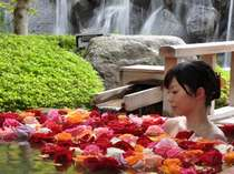 『ばら妃乃湯』バラの香りに包まれてちょっと贅沢な気分を味わってください♪(毎週日/水/金曜日限定)