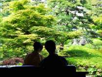 ・四季折々に風情を楽しめるお庭がくつろぎのご滞在につながります