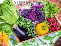 *減農薬&有機栽培のお野菜を使用!無添加の味噌・醤油・天然塩・放し飼いの自然卵も★