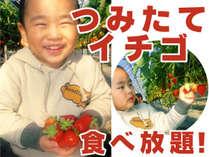 楽しくて美味しいイチゴ狩り!で楽しい想い出間違いなし!
