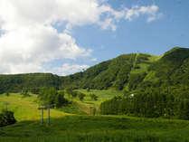 夏のハチ高原(イメージ)広がる緑、青い空・・・さわやかな気候の中いっぱい自然を感じてください