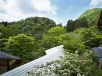 ■外観■2階の窓より松岳山をのぞむ~夏~
