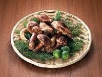 ■食材■新潟県産の松茸※写真はイメージです