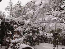 ■外観■冬の雪景色