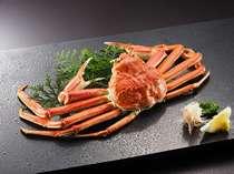 ●ゆで本ズワイ蟹一杯 食べごたえ十分