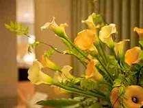 「ロビー」では、季節のお花がお迎え致します。