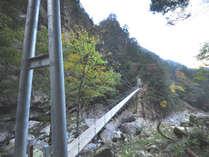 谷を見下ろしながら渡る平等クラ吊橋。スリル満点です!