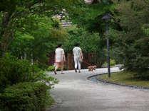 周辺はお散歩にぴったりでペットと遊べる自然もいっぱい♪