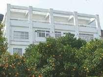 みかん畑の中にある鉄筋3階の建物