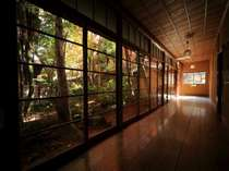 棟と棟をつなぐ渡り廊下 手漉きガラスがノスタルジックな雰囲気を出しています