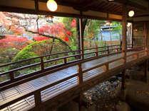 【渡りの橋(登録文化財 )】明治32年築 多くの文人墨客もこの橋を渡りました。紅葉は11月中旬が見頃です。