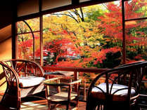 【花の棟客室の一例】花の棟からの風景。秋には紅葉を独り占め出来ます。