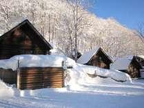 雪の朝きらきら
