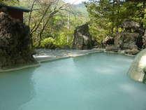 ◆特別サービスプランです◆白船荘新宅旅館の源泉を楽しむ