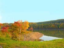 目の前に広がる秋の聖台ダム