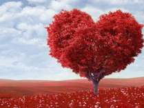 【期間限定】愛するあなたに恋する2人旅~アップグレード四季彩御膳&嬉しい(5)大特典付き~