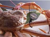 松葉蟹ゴールドタグ