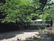 [游月山荘 夏] 当館自慢の月光橋。川のせせらぎを聞きながら、山間を抜ける涼しい風に癒されます。