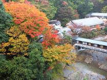[游月山荘 秋] 紅葉の頃の游月山荘。真紅に染まる落葉山は圧巻。