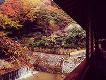 [游月山荘 秋] 月光橋からの紅葉の眺め。当館一番の撮影スポットです。